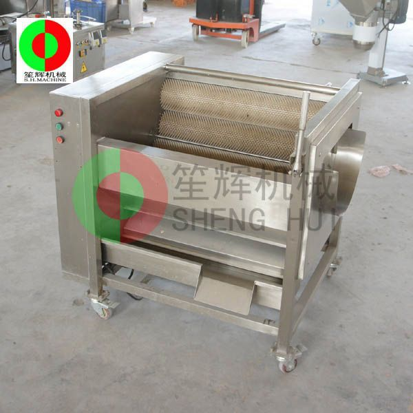Guangdong factory Direct selling full automatic tomatoes washer QX-608