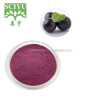 Hot sale acai berry juice powder acai berry china