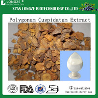 High quality Tiger Stick Extract / dried Root Polygonum cuspidatum Sieb Resveratrol / Giant Knotweed Root Powder Resveratrol