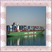 reliable Freight forwarding company from china --SUSAN