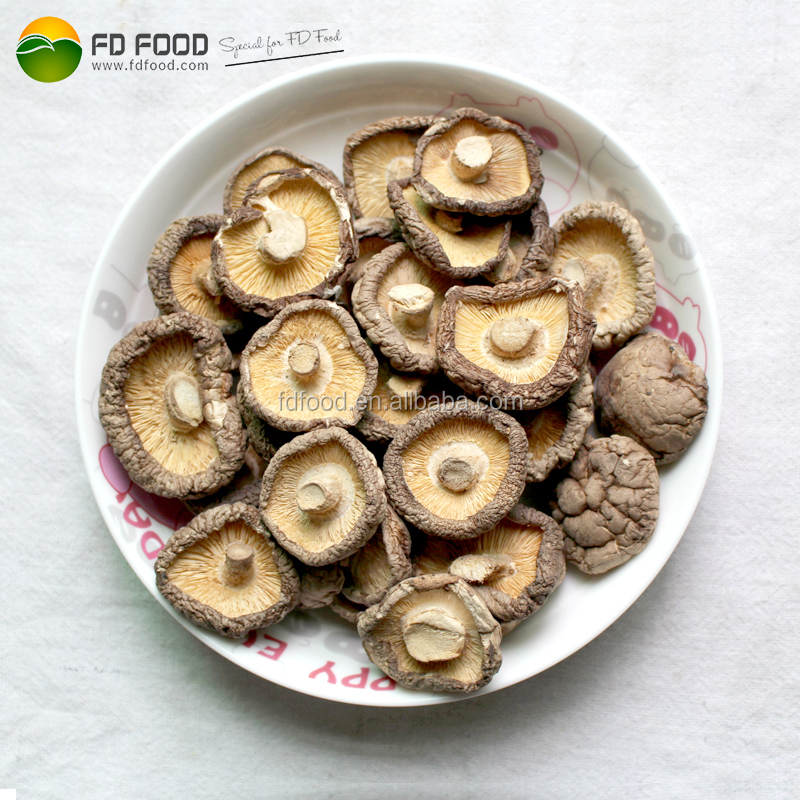 Market Price Freeze Dried Fruits And Vegetables Freeze Dried Shiitake Freeze Dried Mushrooms