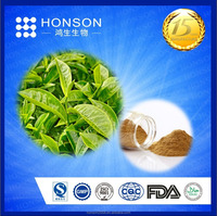 Organic green tea extract polyphenol powder for health product from 15 years GMP factory