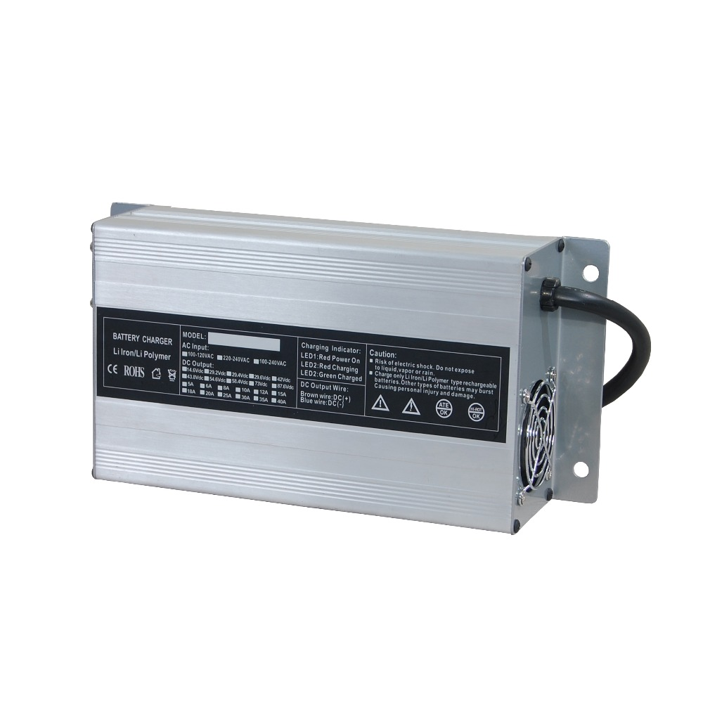 Hot Sale Clean Equiment Battery Charger with CE&ROHS 110v 220v Input