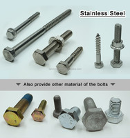 A2 70 M10x1.25 10.9 Grade 8 Stainless Steel Bolts/Full Thread Stainless Steel Nuts and Bolts/Astm A325 Stainless Steel Hex Bolts