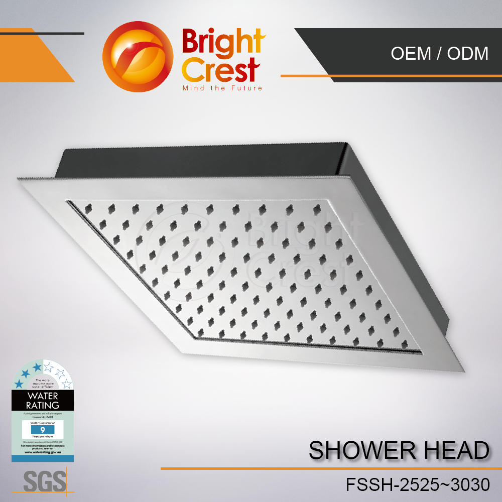 Brightcrest-Wanted shower head gasket for Vietnam