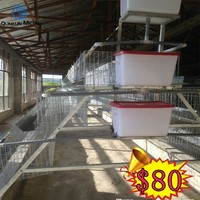 Trade Assurance 3 Tiers 4 Tiers Battery Cage Chicken Layer Laying Hen Cage For Sale from QUNKUN