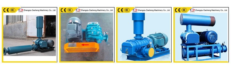DSR225 China High Quality Roots Positive Displacement Blower