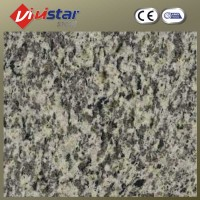 Competitive Price for Tiger Skin White Granite