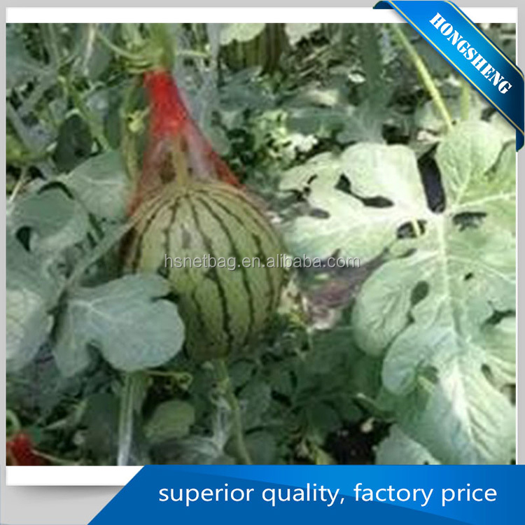 Factory direct sale knotless tubular fruit vegetables small net mesh bag