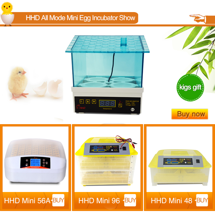 HHD new mini size 4 eggs incubator machine price easy portability YZ-4