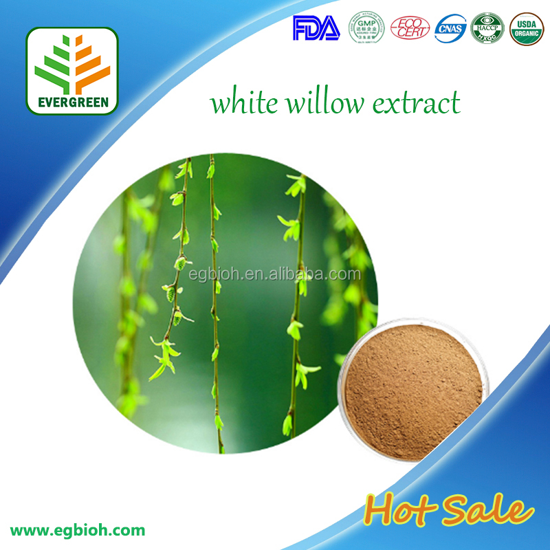 Pure White willow extract/white willow bark extract/white willow bark plant extract powder salicin 98%