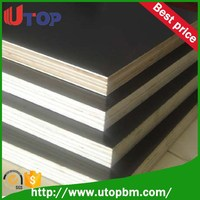 Linyi manufacture commercial plywood/marine plywood/film faced plywood for Canada