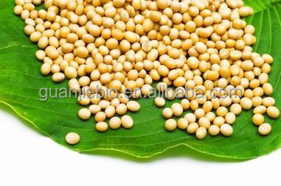 Soy Isoflavones Powder / Fermented Soybean Extract / 10%~80% Soy Isoflavones