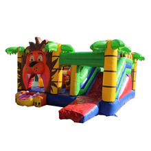 Wholesale Outdoor Inflatable Bouncer Jumping Castle Bounce House With Water Slide