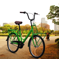 Traditional Design Family City Cargo Bicycle 24
