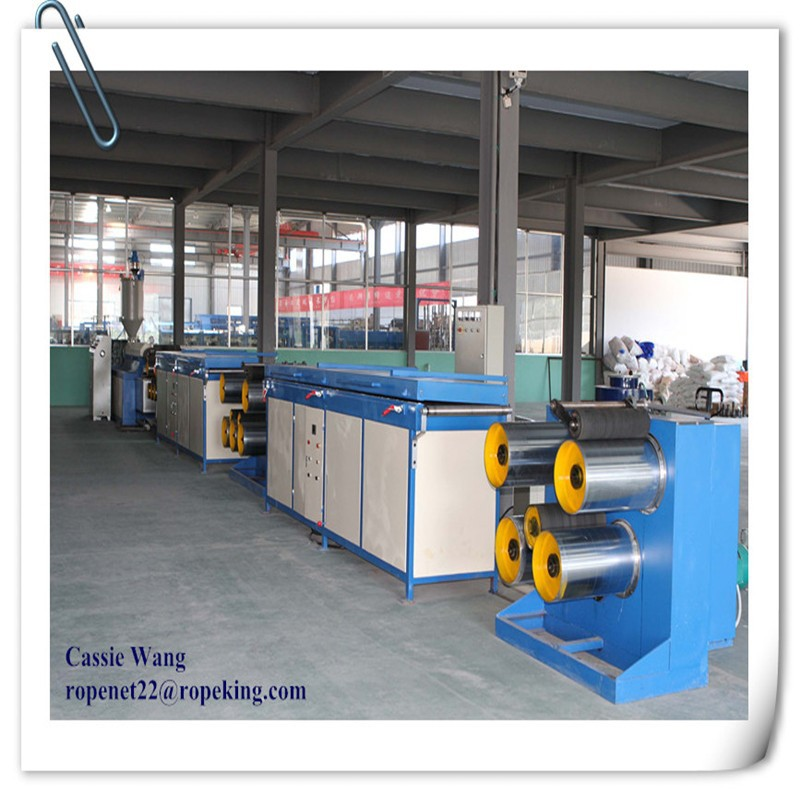 Plastic Tearing Film Production Making Extruder/Tomato twine extruder line