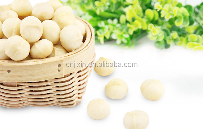 Wholesale price of macadamia nut kernels without shell