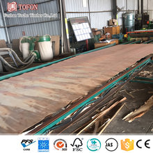 Eucalyptus Sawn Timber Price from Guangdong Factory
