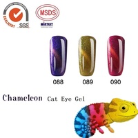 private label uv led soak off chameleon cat eye gel nail polish