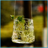 Sha-new product glass vase with rope decoration glass vase for home