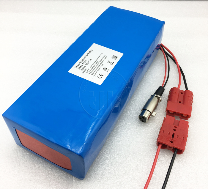 customized 48v 10ah lithium ion battery pack with BMS