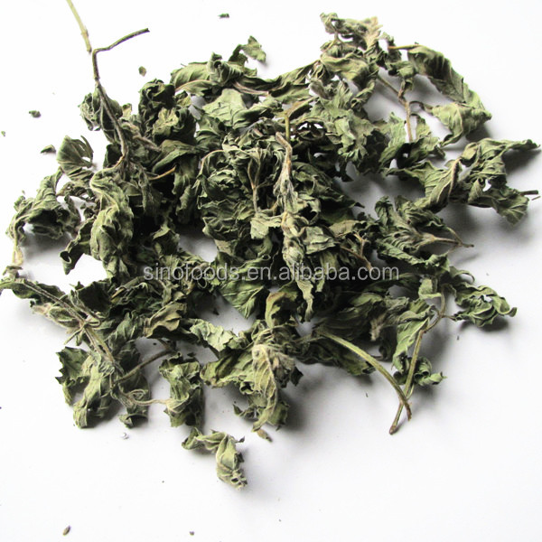 Bo he Factory Direct Sales bulk herbs for sale and high quality mint