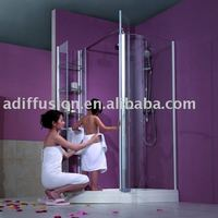 Aluminium pivot shower door NA71