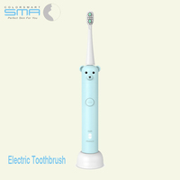 New Design Cartoon Style Ultrasonic Family Adult Electric Tooth Brush With USB Wireless Charging And IPx7 Waterproof