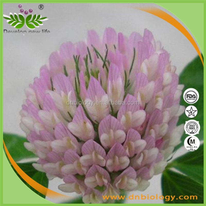 Factory Price Isoflavones 8% powder/ 8% Isoflavones powder/ 8% Isoflavones Red Clover extract