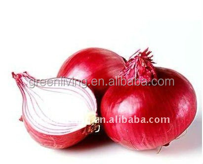 New crop 2014 Fresh dark red onion from Egypt with different sizes
