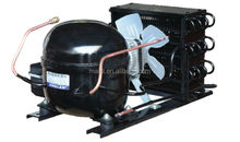 Whole Sale refrigerating and compressor unit for freezer
