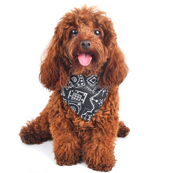 New Design Customized Triangle Cotton Dog Pet Wholesale Cheap Bandanas for Sale