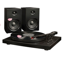 Deluxe Portable Turntable - Home Audio - Turntables - Black