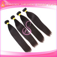 Fashion trend great quality wholesale indian brazilian cambodian malaysian hair
