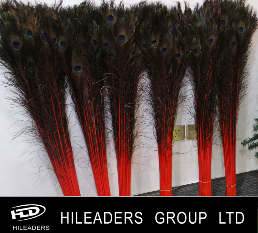 Hot sale 100-110cm Peacock Feather