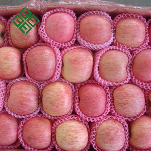 apples produced in shandong hot sales fresh fuji apple