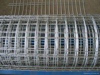 Hot sale!!! Low price galvanized welded wire mesh/3x3 galvanized welded wire mesh