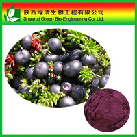 Pharmaceutical grade Acai Berry Extract 4:1, 10:1 Ratio Powder