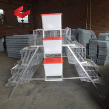 Chicken Layer Poultry Cage/Poultry Farm