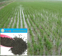 high yield soluble fertilizer / paddy irrigation agriculture fertilizer