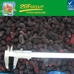 IQF frozen delicious black mulberry have a hot sale in bulk
