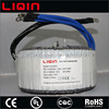 3000W Toroidal Transformer For Solar Inverter Application 12V 24V 48V