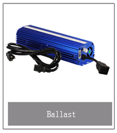 1000W Grow Tent Ballast no fan Hydroponic greenhouse  HPS/MH switchable grow light electric ballast