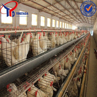 Hebei factory supply high quality hot dipped galvanized poultry chicken cage manufacturer/chick/pullet/chicken layer cage