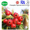 Natural Hawthorn Extract Powder Hawthorne Extract