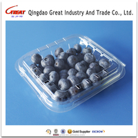 High quality clamshell disposable plastic fruit packing trays for blueberry /strawberry