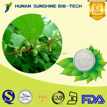 Drum And Plastic Conainer Packaging Resveratrol 98% Giant Knotweed Rhizhome Extract