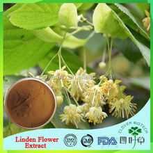 100%Pure Natural Linden Flower Extract powder with competitive price