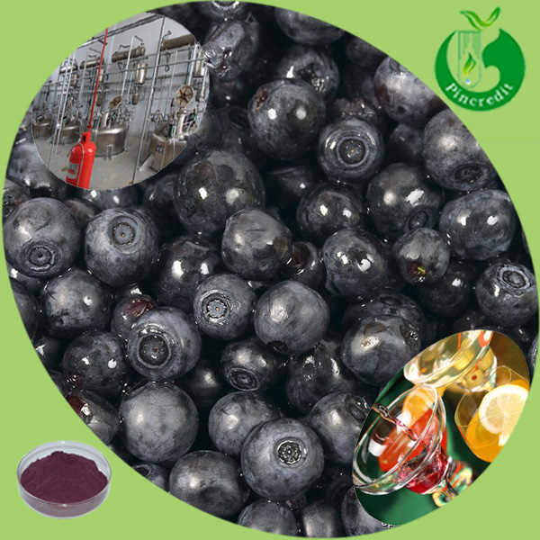 GMP Factory supply high quality 100% natural super Acai berry juice powder