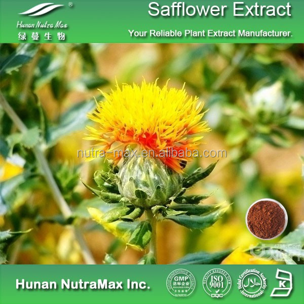 100% Natural Safflower Carthamus Extract
